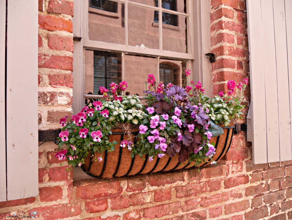 Window box with pansies against brick wall @FanningSparks