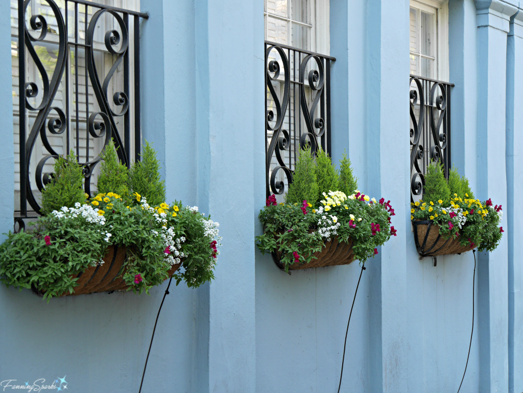 3 window boxes with spring flowers against pretty blue wall @FanningSparks