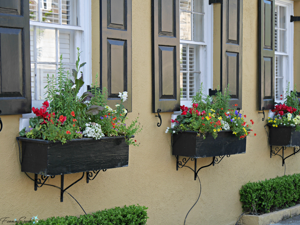 Row of 3 colorful window boxes @FanningSparks