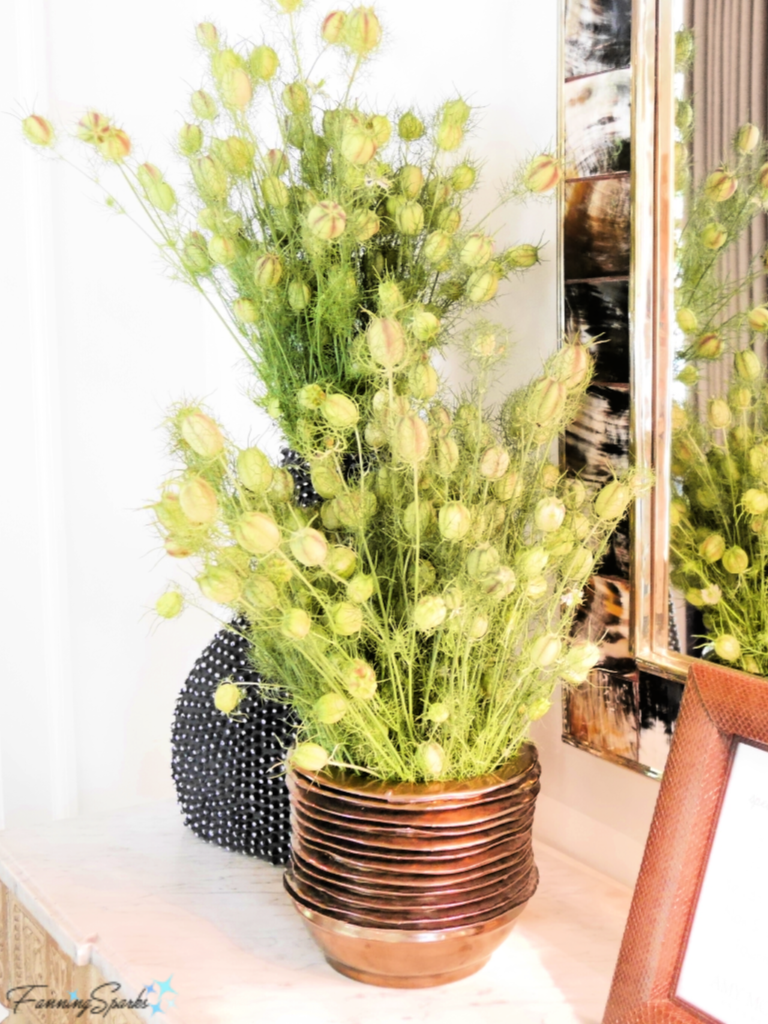Love-in-a-Mist Seed Heads in Textural Vases.   @FanningSparks